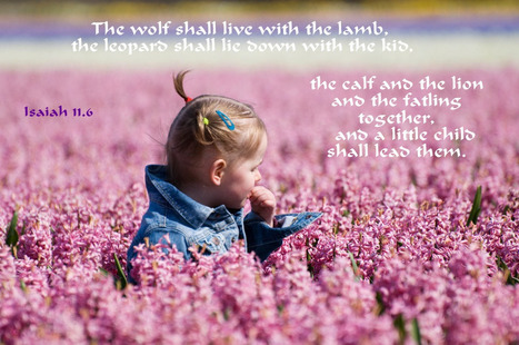 "Isaiah 11.6 Poster - ""The wolf shall live with the lamb..."" 