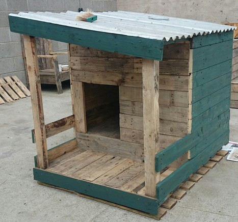 Dog house made with recycled pallets 1001 pal for Wooden chicken crate plans