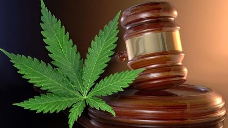 Bill Passes to Allow Medical Marijuana Oil in Virginia | anonymous activist | Scoop.it