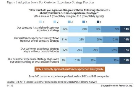 Customer Journeys Trump the Traditional Sales Cycle | Experience Economy | Scoop.it