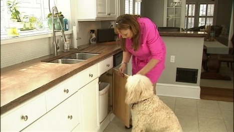 15 simple things you can do to keep your pet safe - MyFox Atlanta | pets | Scoop.it