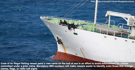IMO vessel numbering  to fight against illegal fishing | Environmental crimes | Scoop.it