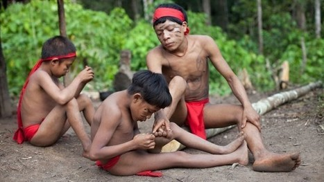 Resistance to antibiotics found in isolated Amazonian tribe | applied genomics | Scoop.it