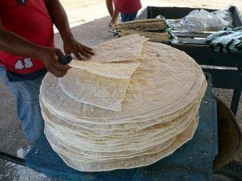 Le <i>casabe</i>, patrimoine culinaire précolombien | Venezuela | Scoop.it