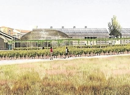 Les producteurs de vin investissent dans l'oenotourisme | Agritourisme et gastronomie | Scoop.it
