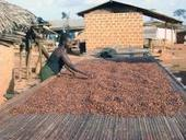 Chocolate Gets Sweeter With CSR in the Mix   Justmeans   Fairly Traded News   Scoop.it