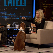 Brace Yourself: Snoop Lion and Chelsea Handler Enter the Dog Food Business | Coffee Puppy Photos, News & Resources | Scoop.it