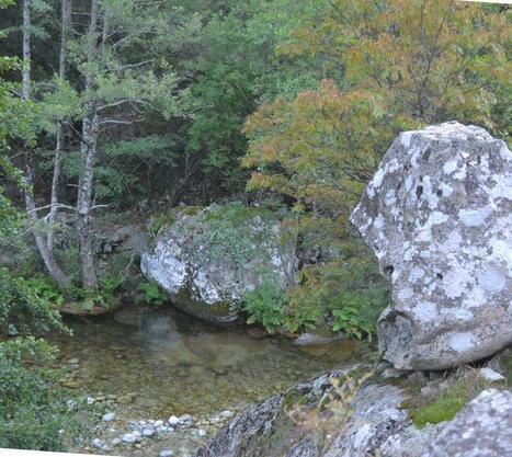 Vallée de la Balagne | Balagne Tourisme | Scoop.it