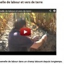 Semelle de labour et vers de terre en Agriculture, vidéo avec Frédéric Thomas | agriculture de conservation | Scoop.it