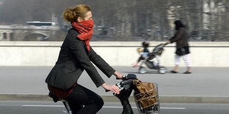 La pollution a un impact immédiat sur la mortalité | Les allergènes et l'allergie cutanée | Scoop.it