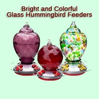 Best Hand Blown   Glass Hummingbird Feeders 2015 | Home And Family | Scoop.it