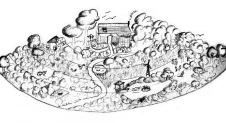 Focus sur la permaculture, un système autonome et hyperproductif ... - Bio à la Une.com | Permaculture en France | Scoop.it