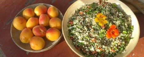 Favoriser l'absorption du fer dans le régime végétarien - l'assiette végétarienne | Webnutrition Online | Scoop.it