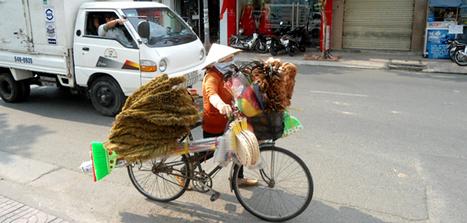 Découvrir les documents que doit présenter un Viet Kieu d'origine pour acquérir la nationalité Vietnamienne | Vivre au Vietnam | Scoop.it