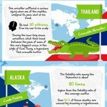 The Worlds Most Dangerous and Unusual Careers   Visual.ly   Infographics ideas for Education   Scoop.it