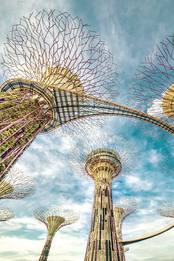 A Canopy of Man-Made Solar-Powered Supertrees Flourishes in Singapore | Mr Foden's Geography updates | Scoop.it