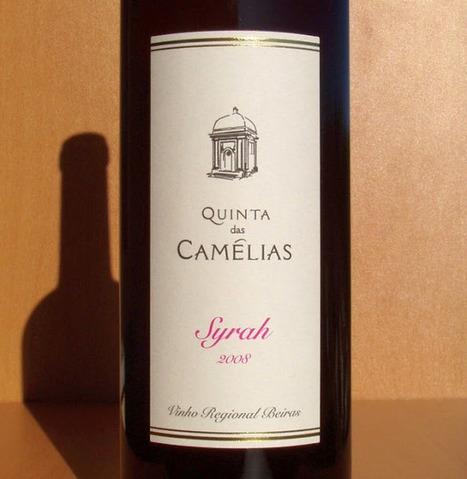O Puto (Bebe): Quinta das Camélias — Syrah '2008 | Wine Lovers | Scoop.it