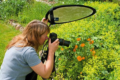 3 Consejos para fotografiar en tu jardín « Blog de Fotografía digital | Fotografía digital aula | Scoop.it