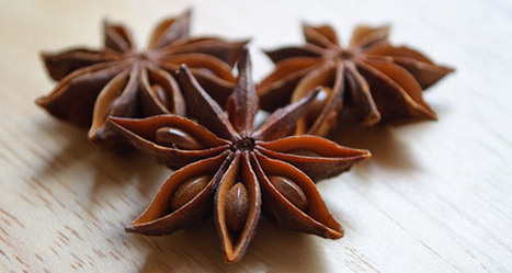 What the Heck Do I Do with Star Anise? | Food & Think | Agricultural Biodiversity | Scoop.it