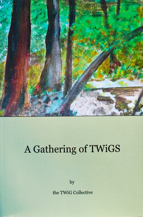 A Gathering of TWiGS Shortlisted for 2014 PEI Book Awards   Love everyone, peace   Scoop.it