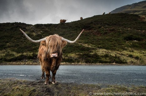 Isle of Skye. My Fuji X-series review   Ben Cherry   How on earth could I be any better human being   Scoop.it