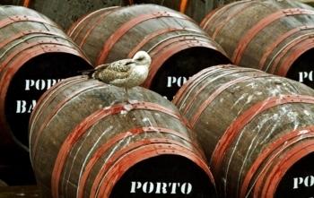 Solar do Vinho do Porto fechou em Janeiro e não tem data de ... | Wine Pulse | Scoop.it
