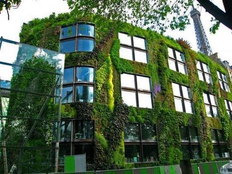 Vertical Gardens article | Garden Design | Wellington Aquaponics | Scoop.it