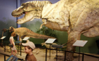 Creation Museum - Creation, Evolution, Science, Dinosaurs, Family, Christian Worldview | Creation Museum | Christianity in Education | Scoop.it