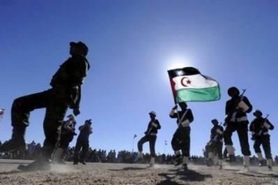 (EXCLU KOACI) Guerre au Mali : Plusieurs milliers d'islamistes au Sahara | Mali in focus | Scoop.it