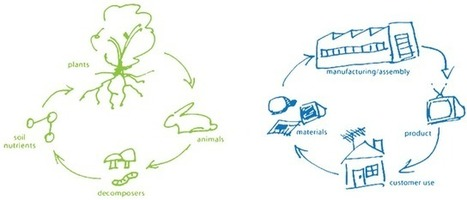 Renew Cities: Thinking Beyond the Pale: Re-imagining Waste as Resource | The Future of Waste | Scoop.it