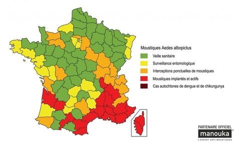 En 2030, la France sera-t-elle envahie par le moustique tigre ?   GreenScoop   Scoop.it