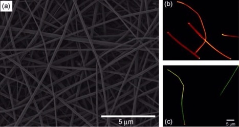 First Lasing Nanofibres Open the Way for Cheap, Soft Laser Textiles | MIT Technology Review | Slash's Science & Technology Scoop | Scoop.it