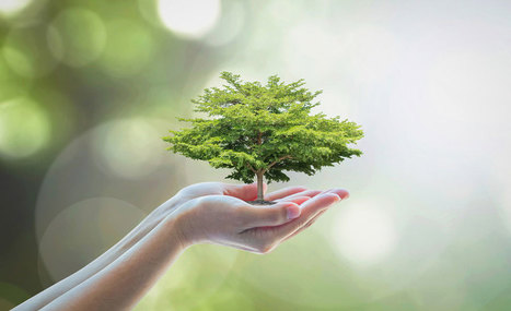 Un nouveau modèle d'investissement pour soutenir l'investissement sociétal !   Responsabilité globale et performance durable des entreprises   Scoop.it