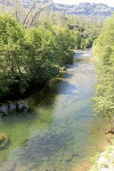 Butte Creek's threatened salmon try to survive in low-water year - Oroville Mercury Register | Fish Habitat | Scoop.it