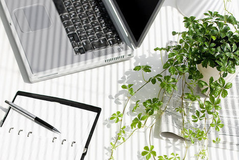 Workspace design trends to increase your productivity   The Future of Work   Scoop.it
