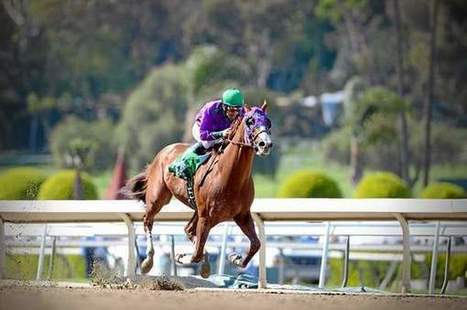 How the Santa Anita Derby could be a Kentucky Derby preview | Horse Racing News | Scoop.it