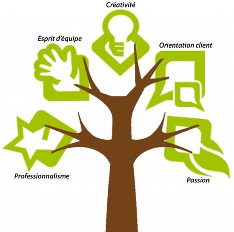 Entreprendre avec ses valeurs | Strageco| Pour une vision d'équipe claire | Entrepreneuriat et Infopreneuriat : Idées et conseils pour redevenir libre ! | Scoop.it