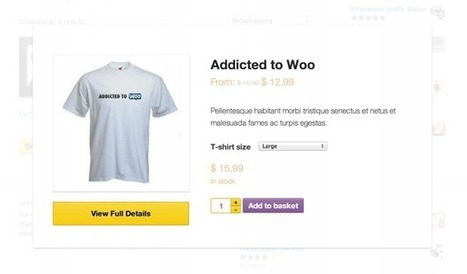 WooCommerce Quick View Extension | Download Free Full Scripts | Bla | Scoop.it