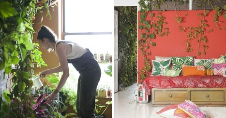 Woman Uses 500 Lush Plants To Turn Her Brooklyn Apartment Into Indoor Jungle | GMOs & FOOD, WATER & SOIL MATTERS | Scoop.it