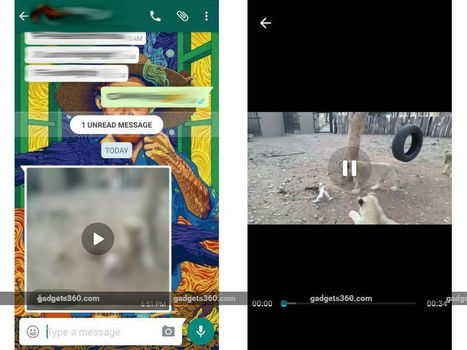 WhatsApp Brings Live Video Streaming Feature to User | Digital Marketing News | Scoop.it
