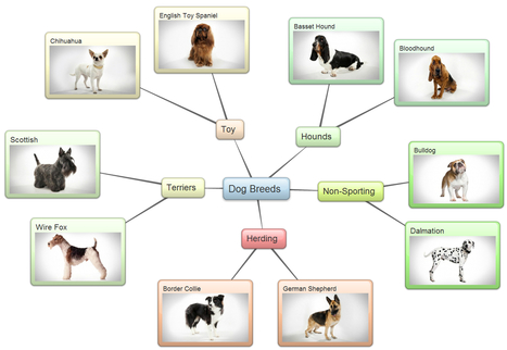 Examples of mind maps created using bubbl.us | Online Tools and Google Analytics | Scoop.it