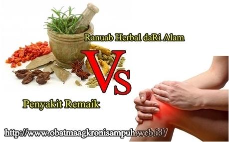 Ramuan Untuk Rematik Herbal Yang Ampuh | Jelly Gamat Gold G | Scoop.it