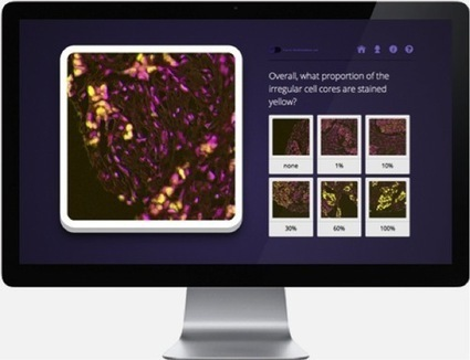 Crowdsourcing, Citizen Science and Finding a Cure for Cancer - Assay Depot Blog | Social Media Research, Research Social Media | Scoop.it