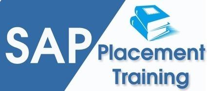 SAP Training in Chennai | SAP Training in Chennai | Scoop.it