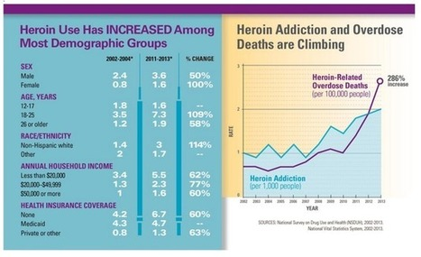 Senator Pushes For $600 Million Response To Heroin Epidemic   Addiction, Treatment & Recovery   Scoop.it