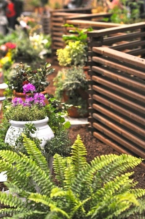 Tips & Advice: HGTV's Garden Expert William Moss Home and Garden Blog | Garden Trends | Scoop.it