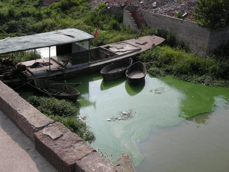 Eco-Compensation in China: Opportunities for Payments for Watershed Services   WRI Insights   Nature + Economics   Scoop.it