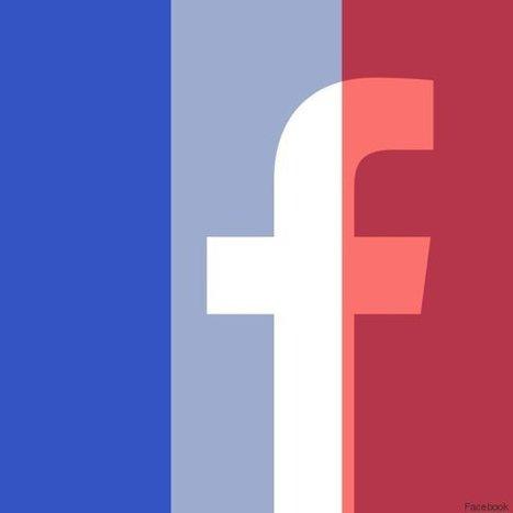 A propos de la polémique sur le drapeau français sur Facebook | Mon Community Management | Scoop.it