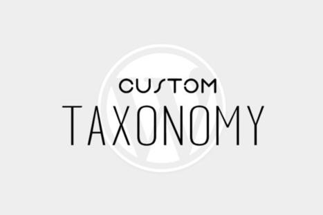 Creating Your First Custom Taxonomy in WordPress - WPSpeak.com | WordPress Tip and Tutorials | Scoop.it