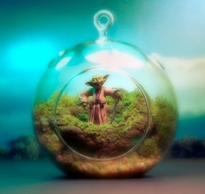 Star Wars Terrariums Featuring Characters on Their Home Planets | SFFWRTCHT | Scoop.it